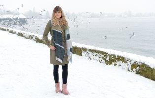 Die Kälte am Bodensee